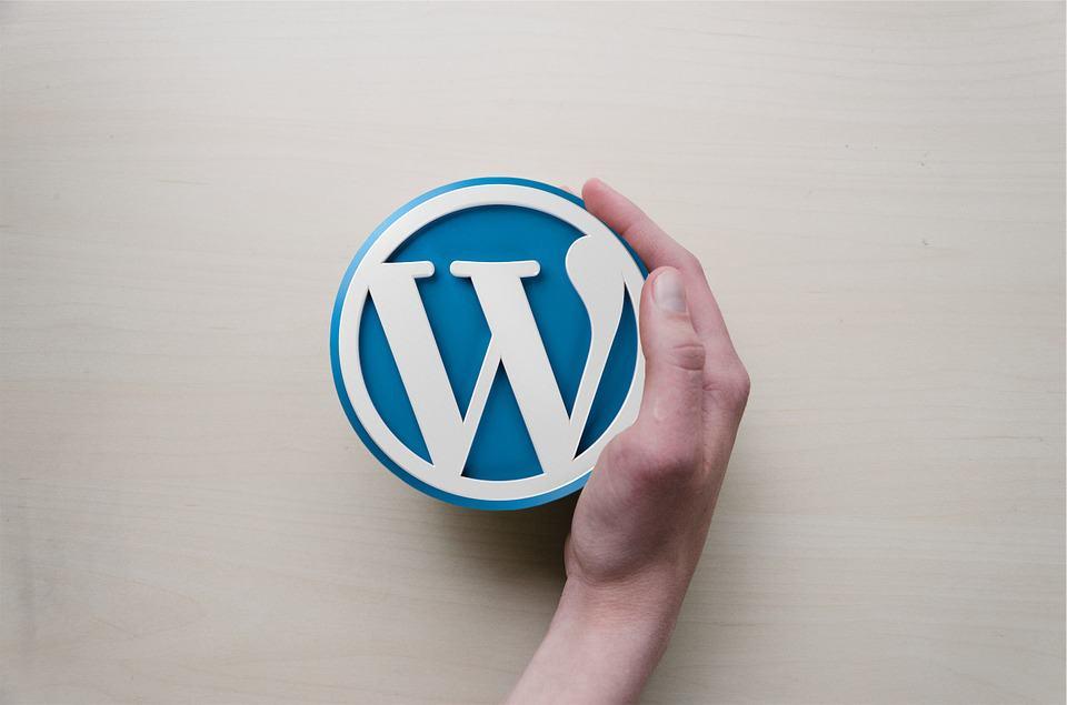 كل ما تحتاج لمعرفته عن ووردبريس WordPress